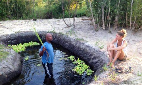 Bassin Jardin Après