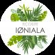 logo_iøniala_512